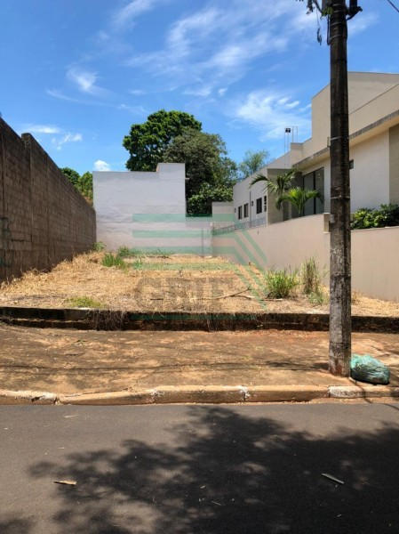 Terreno - Jardim Califórnia - Ribeirão Preto